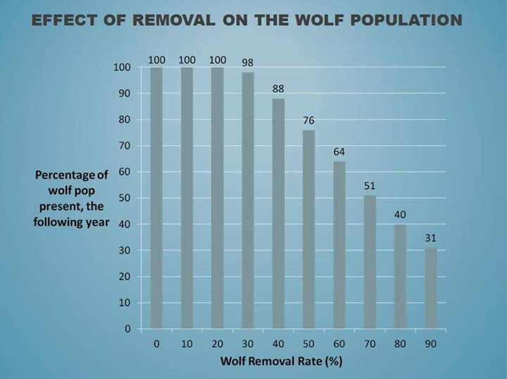 Effect of removal on the wolf population